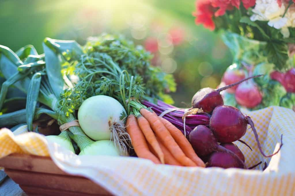 Nutritional counseling in Aurora co